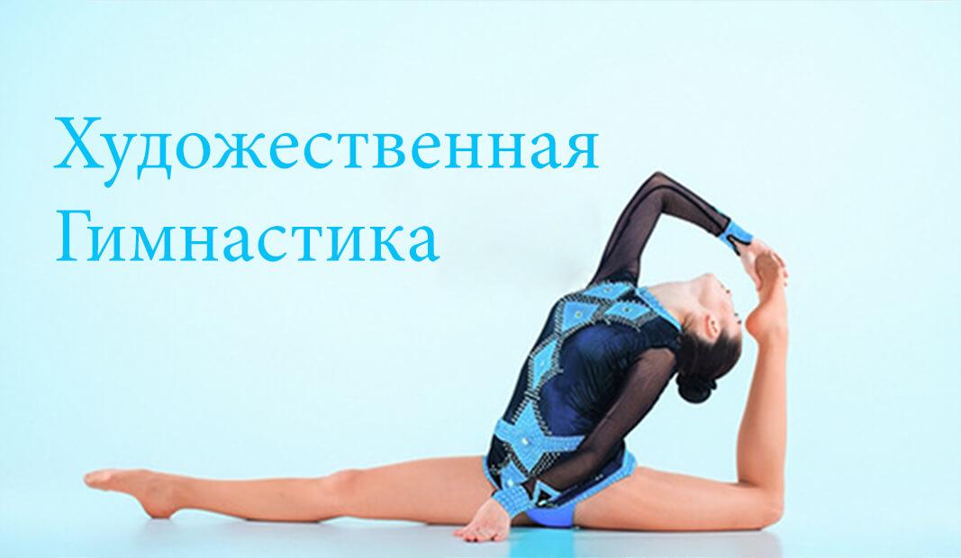 Просмотреть все для художественной гимнастике